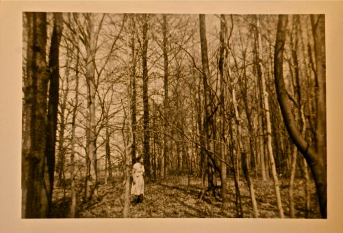 Grandmother in Beech Woods - 1960